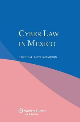 Cyber Law in Mexico